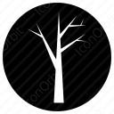 Tree without leaves icon